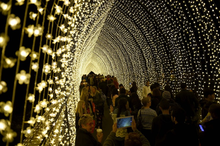Visitors walk through a light tunnel at the Botanical Gardens during the Vivid Sydney festival on June 1, 2016. Vivid Sydney, an annual festival of light, music and ideas, runs from May 27 to June 18. (SAEED KHAN/AFP/Getty Images)
