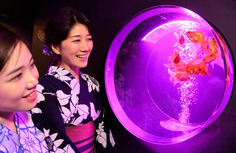 Women look at goldfish during a press preview of the 2016 EDO Nihonbashi Art Aquarium exhibition in Tokyo on July 7, 2016. (TOSHIFUMI KITAMURA/AFP/Getty Images)