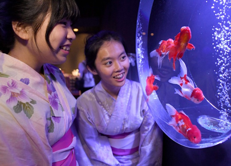 University exchange students Hsiao Yu Hsun (right) and Tsai Yi Chun (left) from Taiwan look at goldfish during a press preview of the 2016 EDO Nihonbashi Art Aquarium exhibition in Tokyo on July 7, 2016. (TOSHIFUMI KITAMURA/AFP/Getty Images)