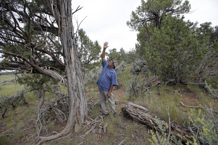 "In this June 22, 2016, photo, Jonah Yellowman, a Navajo spiritual adviser points skyward in Kane Gulch, near Blanding, Utah. Tribal members visit the ""Bears Ears"" land named for a set of rock formations to perform ceremonies, collect herbs for medicinal purposes and do healing rituals. ""Every monument has its purpose. This one has medicines here. This one has prayers, offerings, something that is very spiritual to us,"" Yellowman said. ""We'd like to keep it that way."" (AP Photo/Rick Bowmer)"