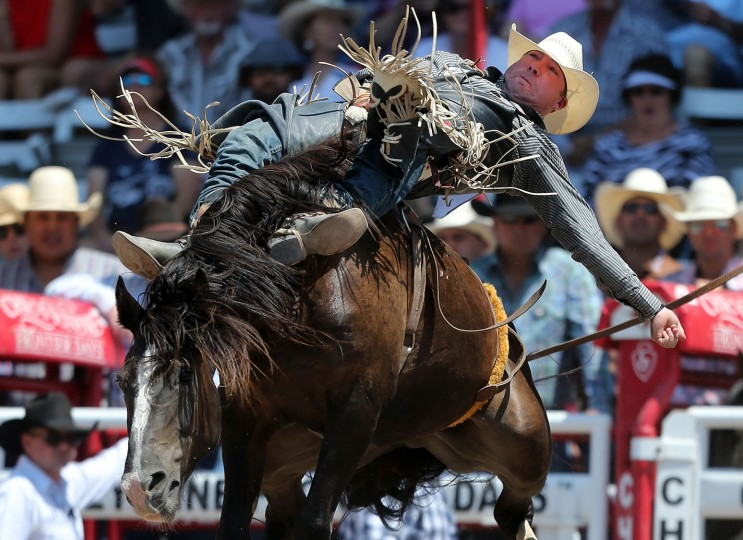 Colt Kitaif of Tylertown, Miss., competes in the bareback event during the fifth day of the 120th annual Cheyenne Frontier Days Rodeo at Frontier Park Arena Wednesday afternoon, July 27, 2016, in Cheyenne, Wyo. (Blaine McCartney/Wyoming Tribune Eagle via AP)