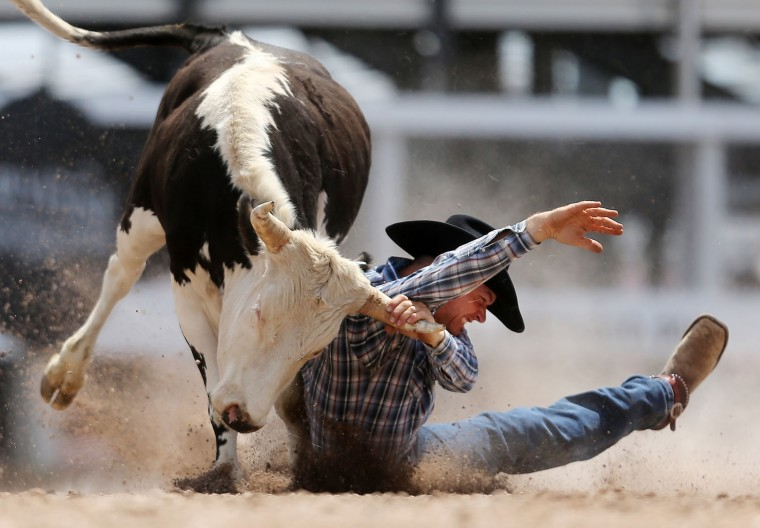 Colt Floyd, of Buffalo, S.D., gets turned around as he unsuccessfully tries to bring down his steer in the steer wrestling event during the first day of the Cheyenne Frontier Days Rodeo, Saturday, July 23, 2016, at Frontier Park Arena in Cheyenne, Wyo. (Blaine McCartney/Wyoming Tribune Eagle via AP)