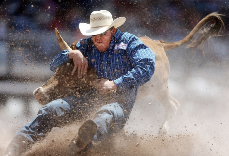 Jacob Edler of Alva, Okla., brings down his steer in the steer wrestling event during the first day of the Cheyenne Frontier Days Rodeo, Saturday, July 23, 2016, at Frontier Park Arena in Cheyenne, Wyo. (Blaine McCartney/Wyoming Tribune Eagle via AP)