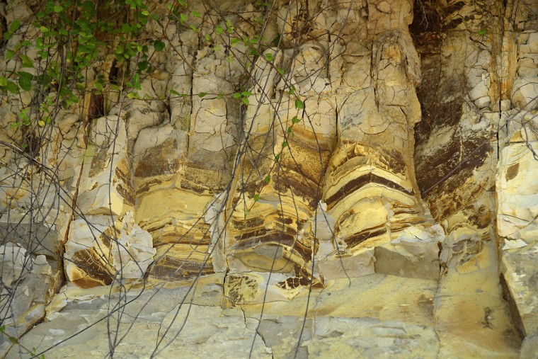 """Scientist Robert Hazen describes this detail of Calvert Cliffs as having, """"Layers of sediment with varying amounts of iron, which turn the layers a darker, reddish-brown color."""" (Algerina Perna/Baltimore Sun)"""