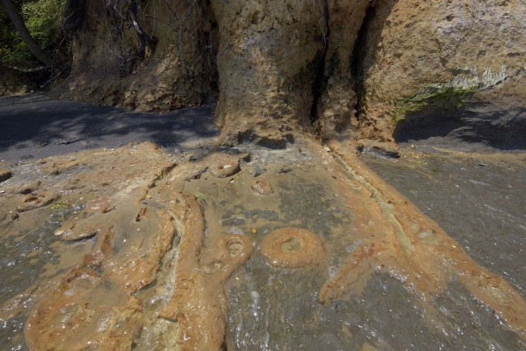 """The blue marl surface of the cliffs and beach is very slippery and cracks easily. Says Robert Hazen, a senior staff scientist at the Carnegie Institution, """"Fluids rich in iron come through here and make these beautiful vein-like systems rich in iron."""" (Algerina Perna/Baltimore Sun)"""