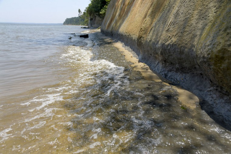 """The Chesapeake Bay waters lap the edges of the Calvert Cliffs at high tide. According to the Maryland Department of Natural Resources, the cliffs """"are slowly eroding at the rate of almost 3 feet per year."""" (Algerina Perna/Baltimore Sun)"""