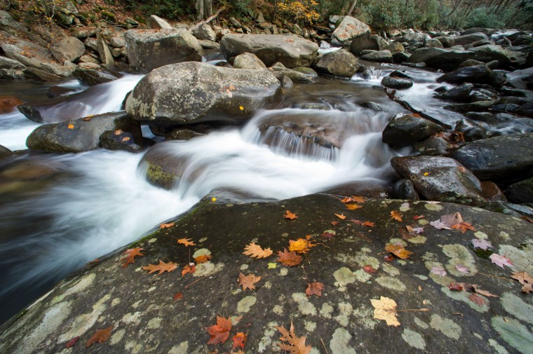 FILE - In this Nov. 5, 2015, file photo, the West Prong Little Pigeon River flows over rocks dotted with fall foliage in the Great Smoky Mountains National Park, Tenn. The National Park Service is celebrating its 100th birthday on Thursday, Aug. 25, 2016. (Adam Lau/Knoxville News Sentinel via AP, File)