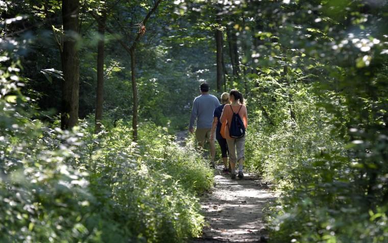 People walk along the Big Gunpowder Trail in the central area of the Gunpowder Falls State Park. (Kim Hairston, Baltimore Sun)