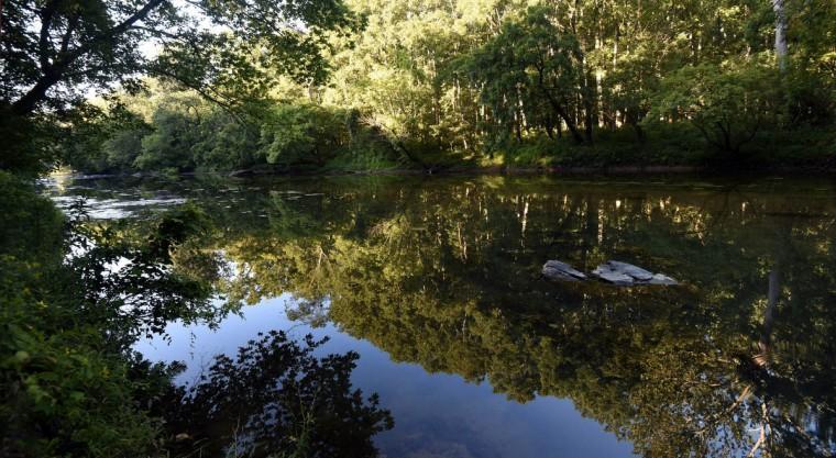 The Big Gunpowder Falls mirrors the surrounding trees on a still August morning. (Kim Hairston, Baltimore Sun)