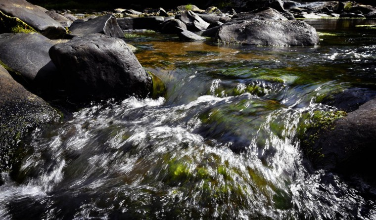 Pot Rocks. Observing the summer light while walking along a trail in the central area of the Gunpowder Falls State Park. (Kim Hairston, Baltimore Sun)