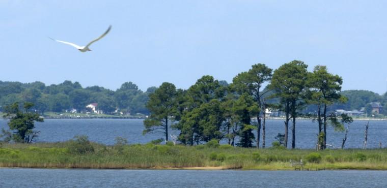 Kent Island boasts many scenic views and peninsulas jutting into the bay. (Algerina Perna/Baltimore Sun)