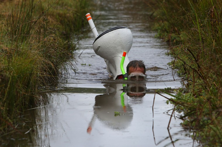 A competitor swims with a toilet on his back during the World Bog Snorkelling Championships in Waen Rhydd peat bog at Llanwrtyd Wells, south Wales on August 28, 2016. Entrants must negotiate two lengths of a 60-yard trench through the peat bog in the quickest possible time without using any conventional swimming strokes. (GEOFF CADDICK/AFP/Getty Images)