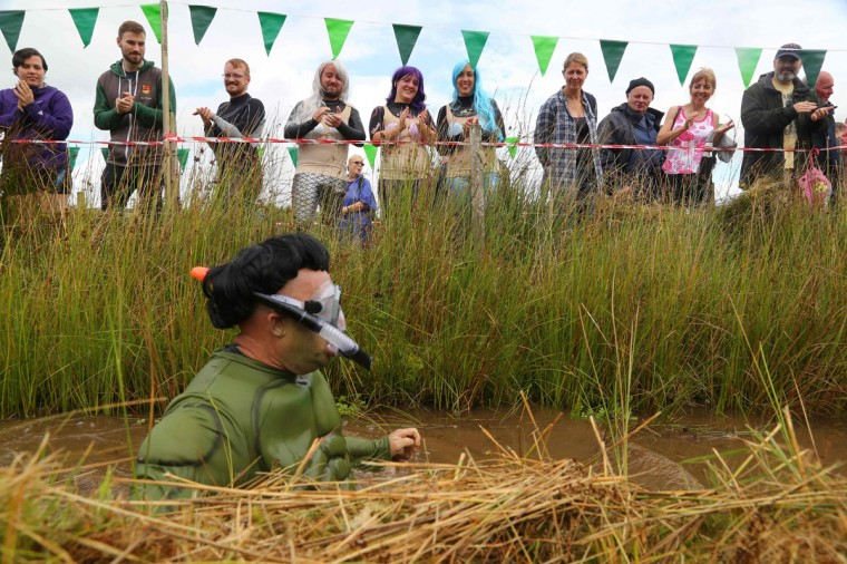 A man dressed as the Incredible Hulk swims the course during the World Bog Snorkelling Championships in Waen Rhydd peat bog at Llanwrtyd Wells, south Wales on August 28, 2016. Entrants must negotiate two lengths of a 60-yard trench through the peat bog in the quickest possible time without using any conventional swimming strokes. (GEOFF CADDICK/AFP/Getty Images)
