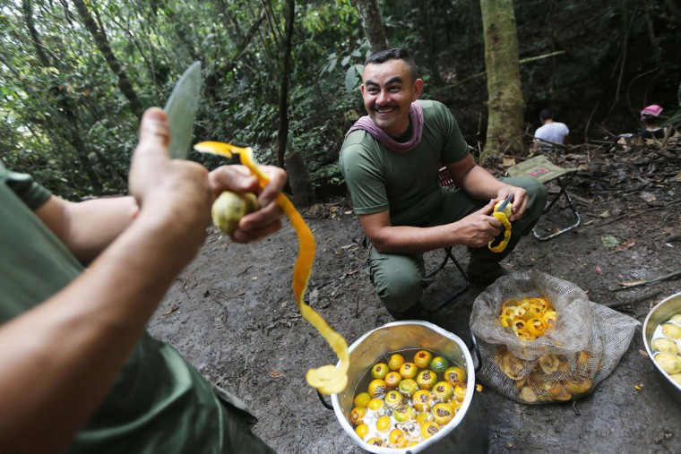 FARC (Revolutionary Armed Forces of Colombia) rebels prepare a meal at the 10th Guerrilla Conference in the remote Yari plains where the peace accord was in the process of being ratified by the FARC on September 23, 2016 in El Diamante, Colombia. The peace agreement, which was ratified tody by the FARC, attempts to end the 52-year-old guerrilla war between the FARC and the state, the longest-running armed conflict in the Americas which left 220,000 dead. The final agreement is set to be signed on September 26 and will then be put to vote by the public in a referendum on October 2. The plan calls for a disarmament and re-integration of most of the estimated 7,000 FARC fighters. (Photo by Mario Tama/Getty Images)