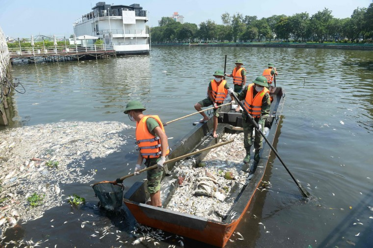 Soldiers collect dead fish at Ho Tay lake (West Lake), Hanoi's largest lake, on October 3, 2016. (HOANG DINH NAM/AFP/Getty Images)
