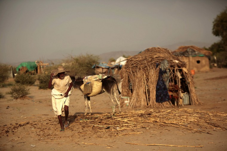 In this photo taken on Thursday, Oct. 6, 2016, an elderly man walks next to his donkey at a camp for internally displaced people near the town of Abs, located on Yemen's western coastal plain below towering desert mountains. Hundreds of Yemenis fleeing war are now living in tents and mud-brick shelters scattered across a cornfield, where they buried the remains of loved ones they carried with them when they escaped. (AP Photos / Hani Mohammed)