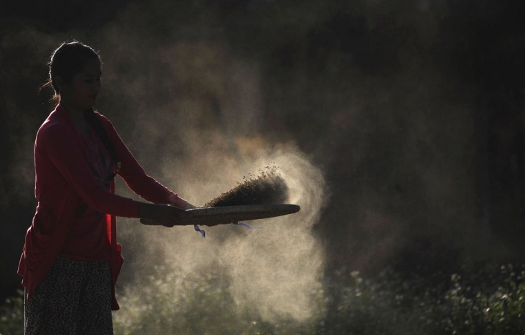A Nepalese village woman separates grain from chaff a after harvest in Chunnikhel on the outskirts of Kathmandu, Nepal, Thursday, Oct. 20, 2016. Agriculture is the main source of food, income, and employment for the majority of people in Nepal. (AP Photo/Niranjan Shrestha)