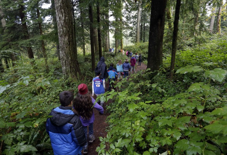 In this Oct. 6, 2016 photo, Outdoor School students walk through the dense forest on their way to a lesson at Camp Howard in Mount Hood National Forest near Corbett, Ore. The outdoor education is unique to Oregon and is a rite-of-passage for public school students that's meant to instill a respect for nature in each generation--studies show it improves attendance and boosts test scores. (AP Photo/Don Ryan)
