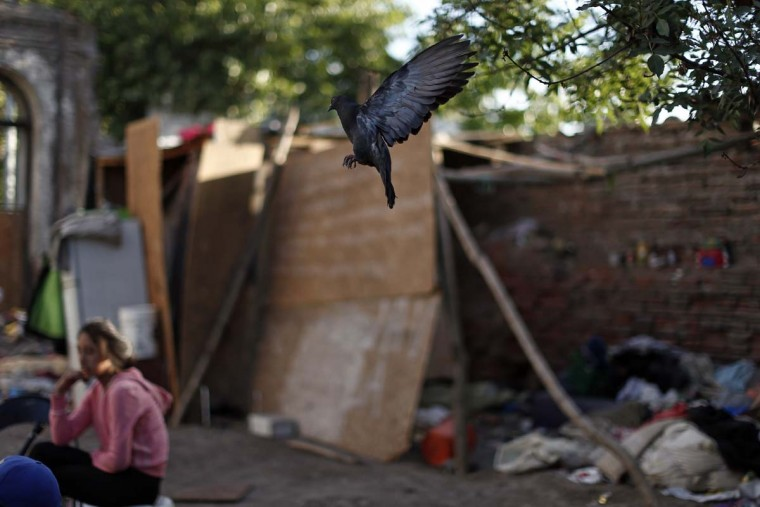 In this Oct. 10, 2016 photo, a dove flies in and abandoned and ruined building inhabited by street children and youths in Santiago, Chile. The youths survive by begging and committing petty crimes. Many if not all of the youths living in the ruin were once wards of the state, living in shelters of National Service for Minors. (AP Photo/Luis Hidalgo)