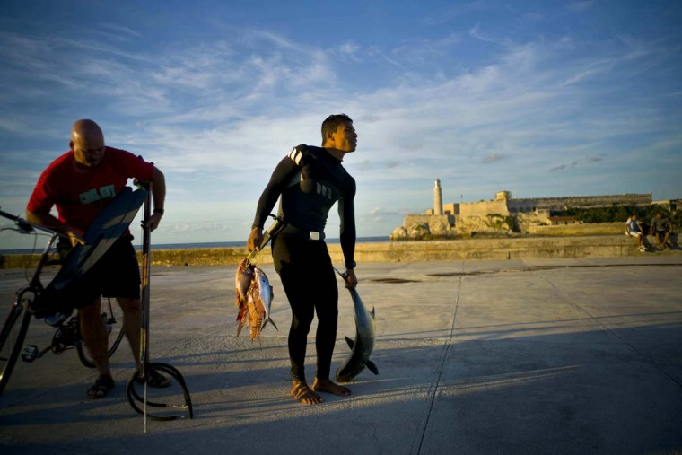 In this Nov. 10, 2016 photo, a fisherman in a diver suit carries his day's catch, near the lighthouse in Havana, Cuba. While most Cubans can't afford to buy fish, Cuba's private restaurants, its growing upper-middle-class and the thousands of foreigners who live in the capital all are avid buyers. (AP Photo/Ramon Espinosa)
