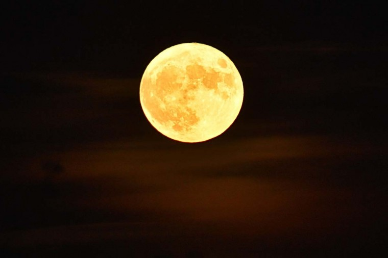 """The 'Supermoon' rises on November 14, 2016 in Vertou, western France. The moon will be the closest to Earth since 1948 at a distance of 356,509 kilometres (221,524 miles), creating what NASA described as """"an extra-supermoon"""". (LOIC VENANCE/AFP/Getty Images)"""