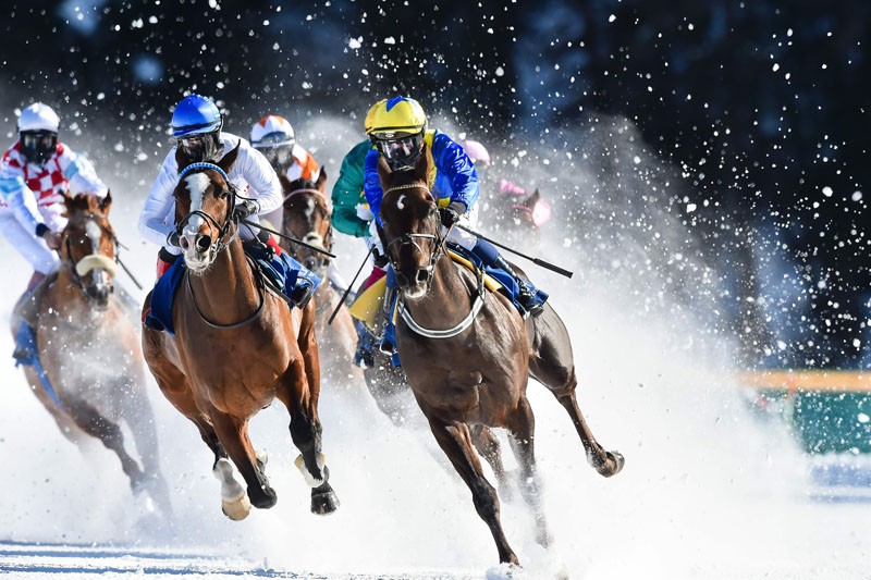 Horses Race On A Frozen Lake At Swiss Resort S White Turf Event