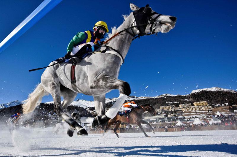 Switzerland Horse Racing White Turf
