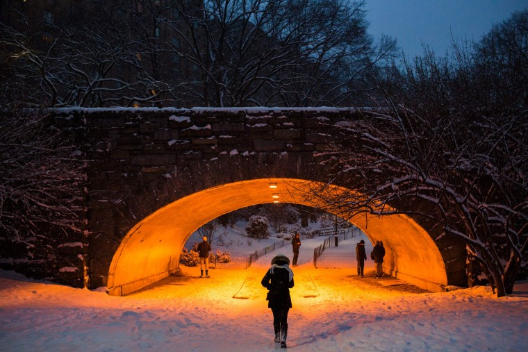 People walk amid a snowfall in Central Park during a Winter storm on January 7, 2017 in New York. (Eduardo Munoz Alvarez/AFP/Getty Images)