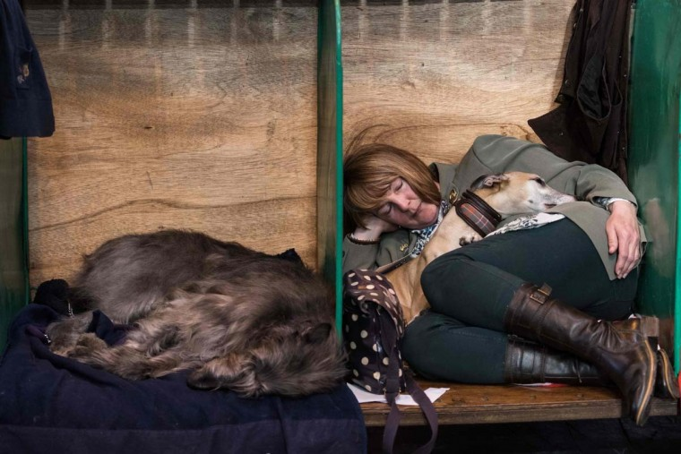 A woman rests with dogs in a dog pen on the first day of the Crufts dog show at the National Exhibition Centre in Birmingham, central England, on March 9, 2017. (OLI SCARFF/AFP/Getty Images)