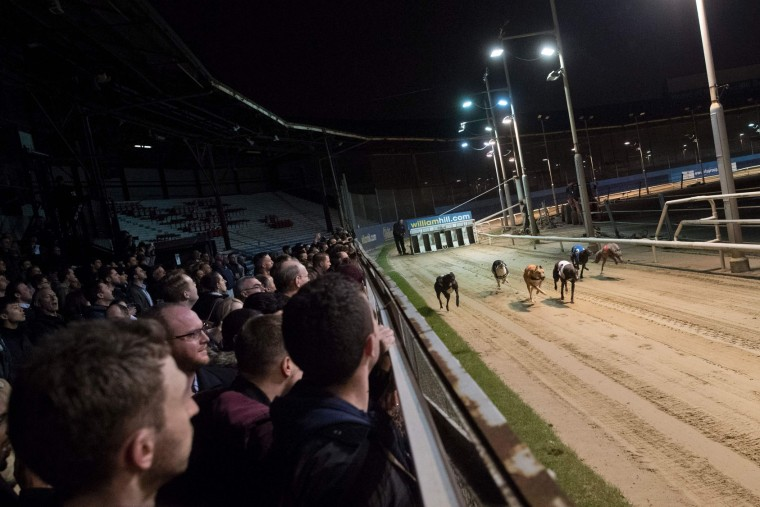 Racegoers watch the track during an evening of greyhound racing in south London on March 18, 2017. March 25 will see the final day of racing at the Wimbledon dog track which will close to be demolished to make way for a new stadium for AFC Wimbledon. The closer of track will mark the end of the once hugely popular working-class sport of greyhound racing in London. (Justin Tallis/AFP/Getty Images)