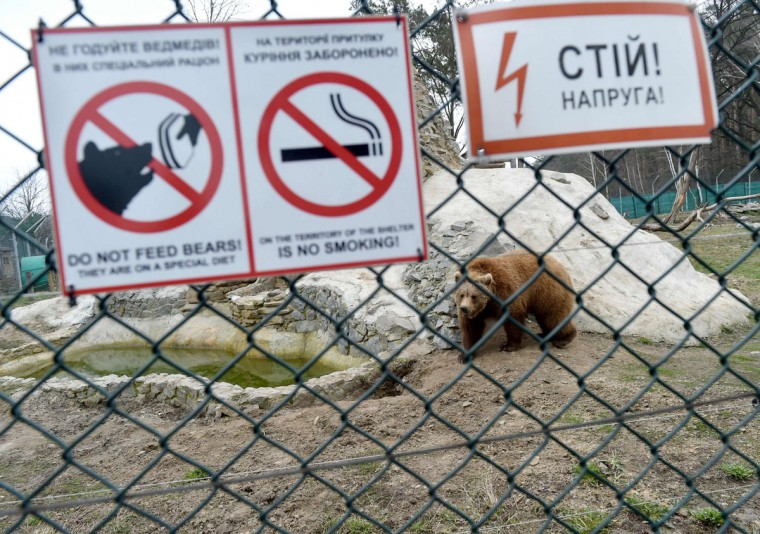 A picture shows warning signs on the fence of an enclosure in a shelter for bears rescued from circuses and private restaurants of Ukraine, near Zhytomyr, some 150 km west of Kiev, on March 24, 2017. Tortured for years by human hands these mighty animals got a chance to start it all over again in a shelter near the city of Zhytomyr, in the northwest of the country. Opened in 2012 by international animal charity Four Paws, the rescue centre soon became one of the biggest sights of the region. (SERGEI SUPINSKY/AFP/Getty Images)