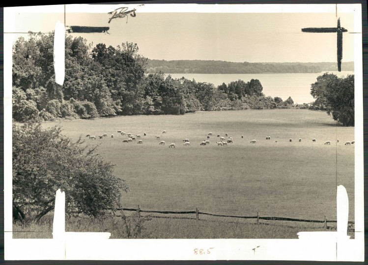 View of Sotterley Plantation, 1968. (Baltimore Sun archives)