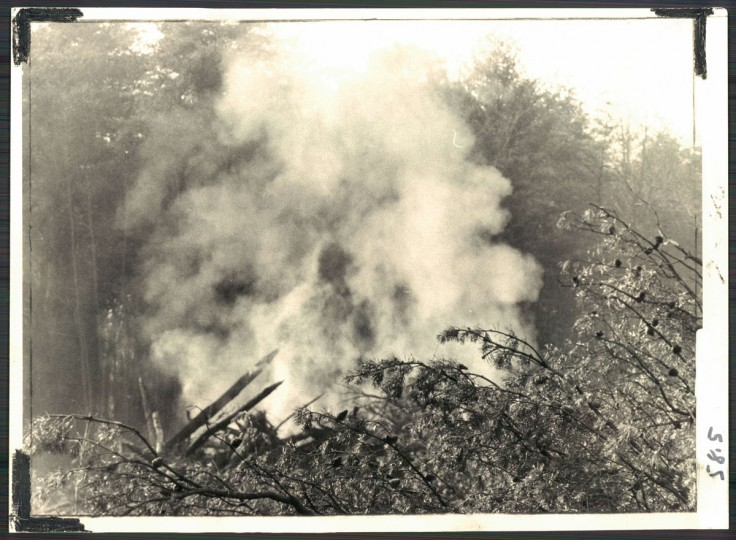 """SMOKE IS NO. I -- Average Baltimoreans say air pollution is the city's major problem, according to a recent survey. Shown above are trees being burned by a land developer now working on Cypress Creek road near Ritchie highway. Photo dated January 13, 1971. (Baltimore Sun archives)"