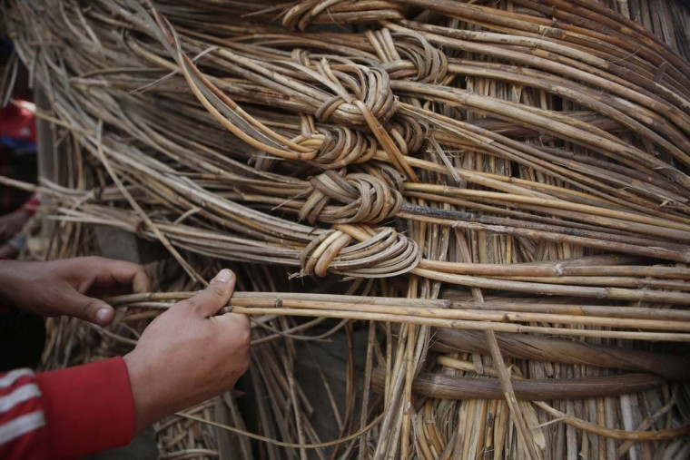 In this April 18, 2017, photo, a member of Yanwal community use cane strips in the construction of the Rato Machindranath Chariot in Lalitpur, Nepal. The wooden chariot is built to appease the gods in hopes of being blessed with a good rainfall followed by a bountiful harvest. The chariot built every year is 15-meter (48-foot) tall and based on a chassis that is only wide as a small truck. The Yanwals have the task of tying the tower of logs together with trucks loads of cane. (AP Photo/Niranjan Shrestha)