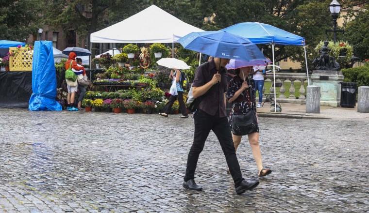 Despite the rain, many people attended FlowerMart in Mount Vernon on September 12, 2015. (Kaitlin Newman/Baltimore Sun)