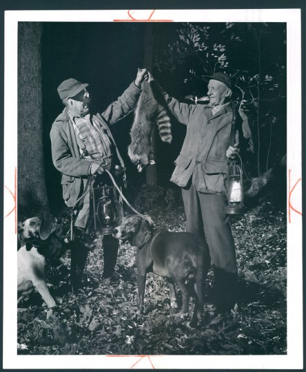 Photo dated 1957 depicting raccoon hunting. (Baltimore Sun archives)