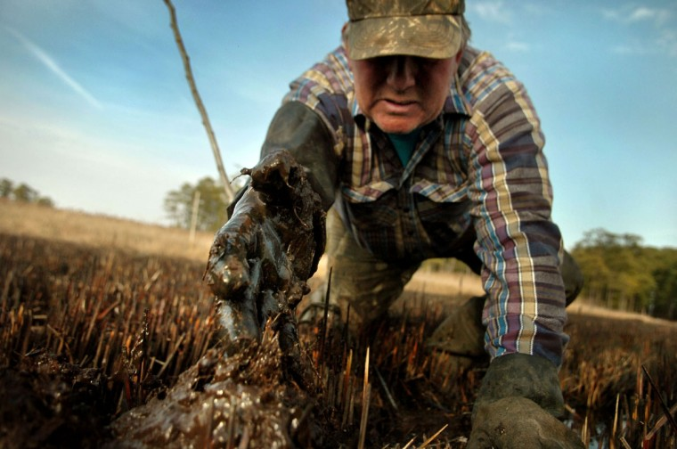 CHURCH CREEK, MD--02/20/2007--Ted Abbott removes mud from a muskrat trap hole in the marshy ground of the Blackwater National Wildlife Refuge near Church Creek, Md. Abbott is one of a few trappers who maintains his traps through a lease with the refuge. GLENN FAWCETT/SUN STAFF