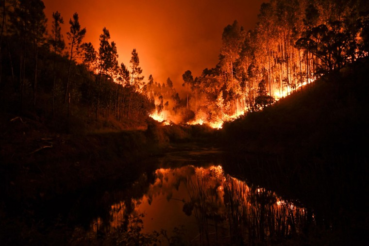A wildfire is reflected in a stream at Penela, Coimbra, central Portugal, on June 18, 2017. A wildfire in central Portugal killed at least 25 people and injured 16 others, most of them burning to death in their cars, the government said on June 18, 2017. Several hundred firefighters and 160 vehicles were dispatched late on June 17 to tackle the blaze, which broke out in the afternoon in the municipality of Pedrogao Grande before spreading fast across several fronts. / (AFP Photo/Patricia Melo moreirapatricia de melo moreira)