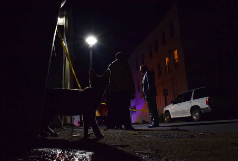 """""""Detectives discuss an October 2016 shooting as a cat darts out of an alley and into a crime scene."""" (Photo and caption courtesy of Maggie Ybarra)"""