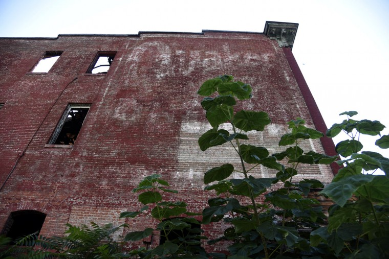 Quaker Oats advertisement of the side of an abandoned rowhouse on Edmondson Ave. and N Mount St. (Kim Hairston/Baltimore Sun)