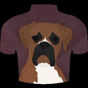 Fuse Boxer