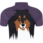 Collie of the Wild