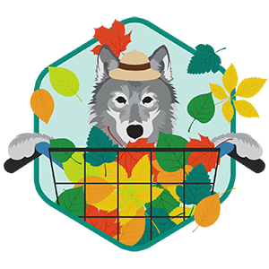 Wolf Packs CyberCycle Challenge