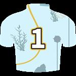 Ocean Plunge