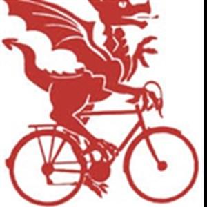 I'd rather ride than hunt dragons!
