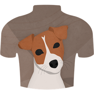 Wear and Terrier