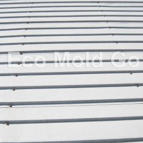 Metal Roofs After Eco Mold Go