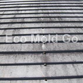 Metal Roofs Before Eco Mold Go
