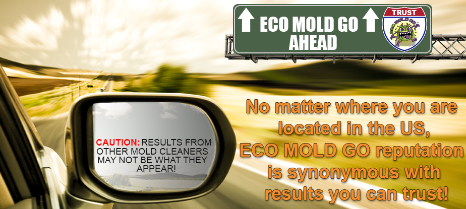 Browse Eco Mold Go Products