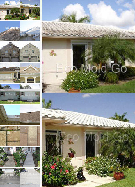 Before and After Photos using Eco Mold Go